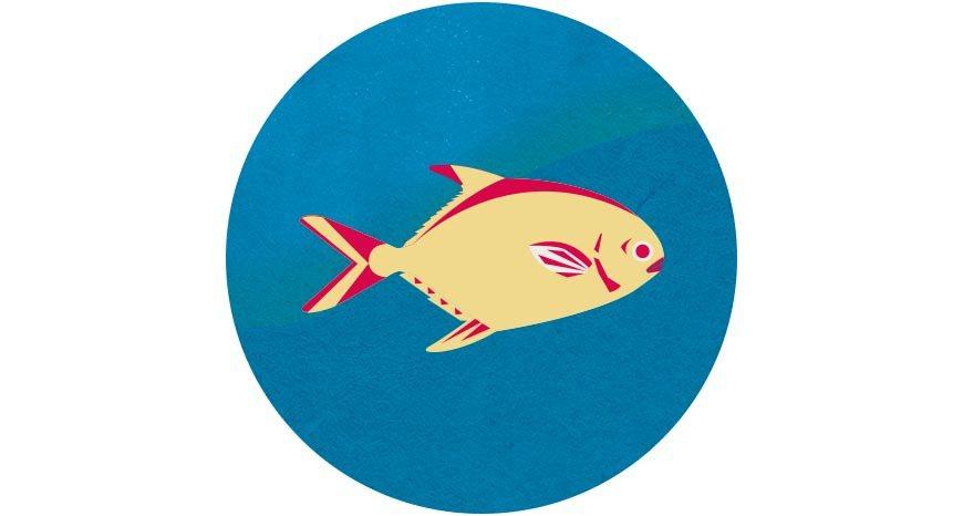 年節餐桌總少不了一條魚,尤其以白鯧更受青睞,因取其「鯧」字討吉祥。 圖/國立臺灣...