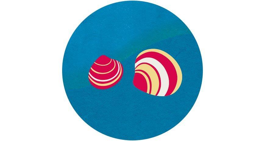 以生態混養的文蛤,透過魚蝦間的各司其職,達到生態與水質平衡 圖/國立臺灣博物館《...
