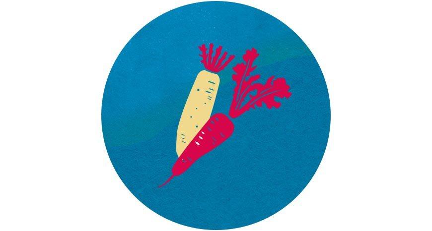 冬天盛產的根莖類蔬菜最為甜美,其中,白蘿蔔俗稱「菜頭」 圖/國立臺灣博物館《20...