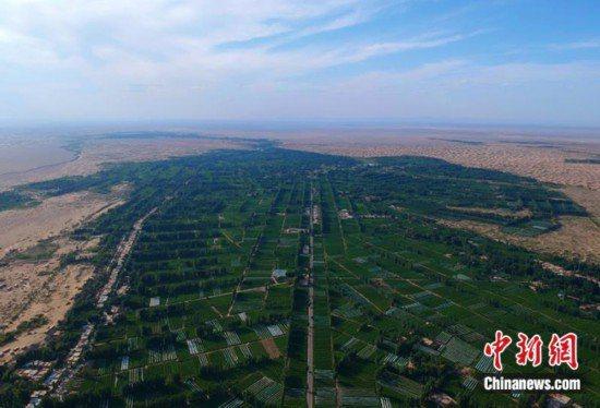 有陸媒指出,甘肅省敦煌市陽關地區林場,十餘年來遭大面積「剃光頭」式砍伐,為求經濟發展犧牲生態環境。(圖/取自中新網)