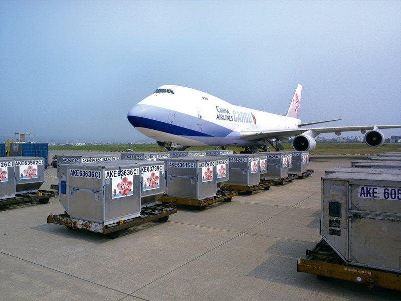 華航(2610)名列全球前六大貨運航空公司,是台灣目前唯一獲得國際醫藥品冷鏈運輸認證的航空公司,看準COVID-19疫苗運送商機,華航開啟超低溫運送服務,添加乾冰後運送保存溫度最低可達-80°C。(本報系資料庫)