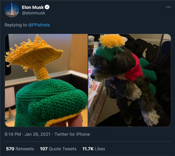 特斯拉執行長馬斯克周二推文,誇讚電商平台Etsy,因為他為自家寵物狗買了頂毛線帽...