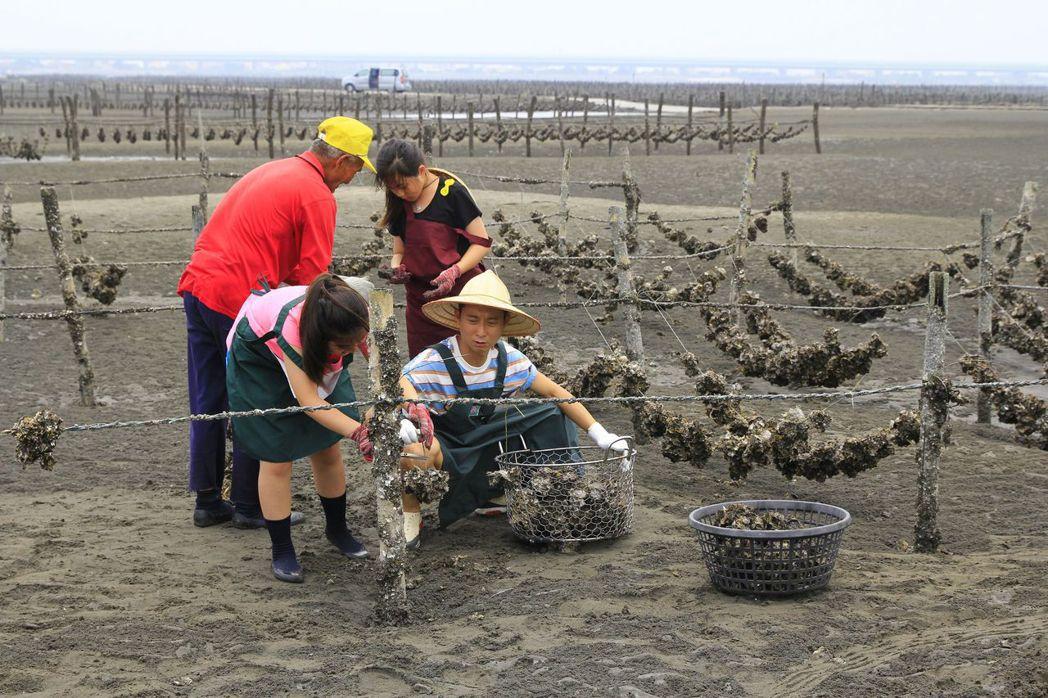 浩子參與錄製公視兒少節目「我家住海邊」,到彰化芳苑探訪「海牛採蚵」漁法,並在蚵田