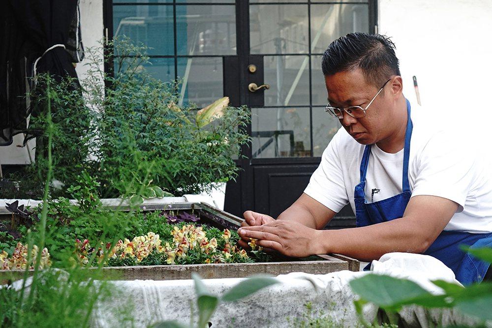 挑食餐酒館屋頂天台香草園,是蔡易達和伙伴們的秘密基地。 圖/曾信耀 攝影