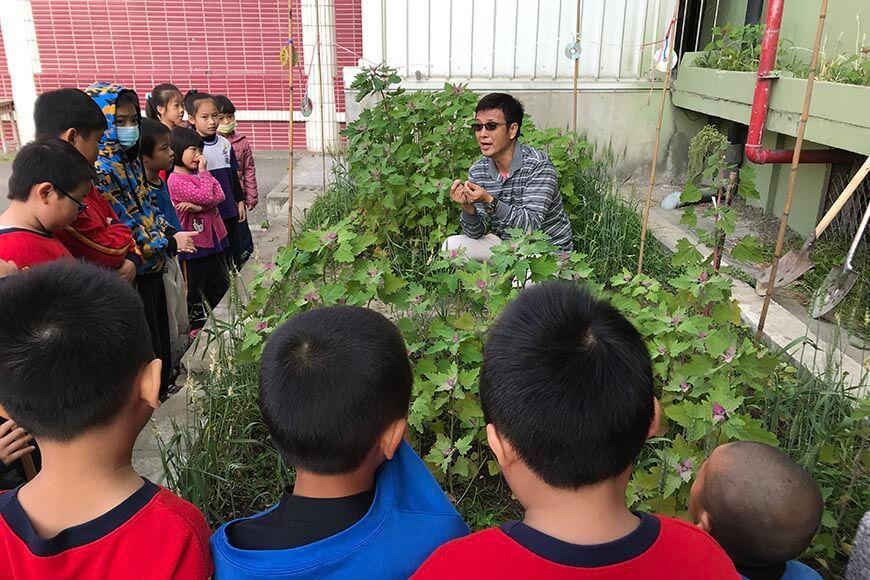 校園可食地景: 老師向學生介紹紅藜、小麥、芝麻、黃豆。 圖/廖肇瑞提供