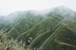 速食山林:抹茶山纜車是觀光特效藥,或高潮一時的搖頭丸?