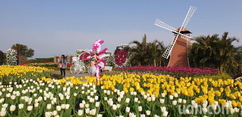 中社觀光花市的鬱金花季和各式花海,今天以熱情森巴舞迎賓。記者游振昇/攝影