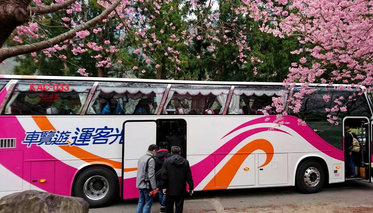國光客運賞櫻專車從2月12日至3月1日(228和平紀念日補假)共計18天 圖/國...
