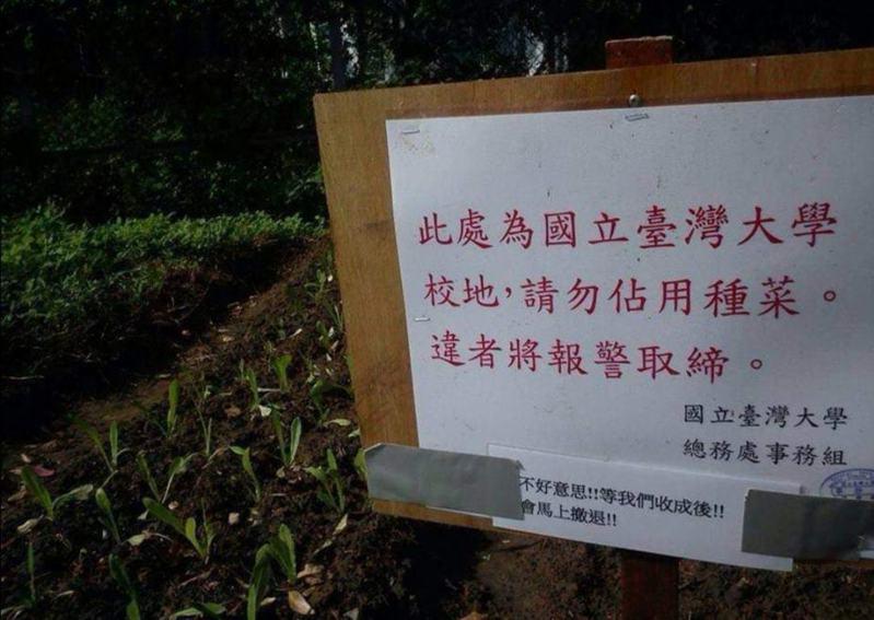 佔用台大校地種菜遭警告,民眾「15字回應」笑翻眾人。圖擷自facebook