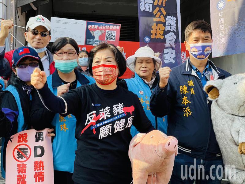 反萊豬公投連署拚50萬份,立委楊瓊瓔今天揹小豬到市場宣傳。記者游振昇/攝影