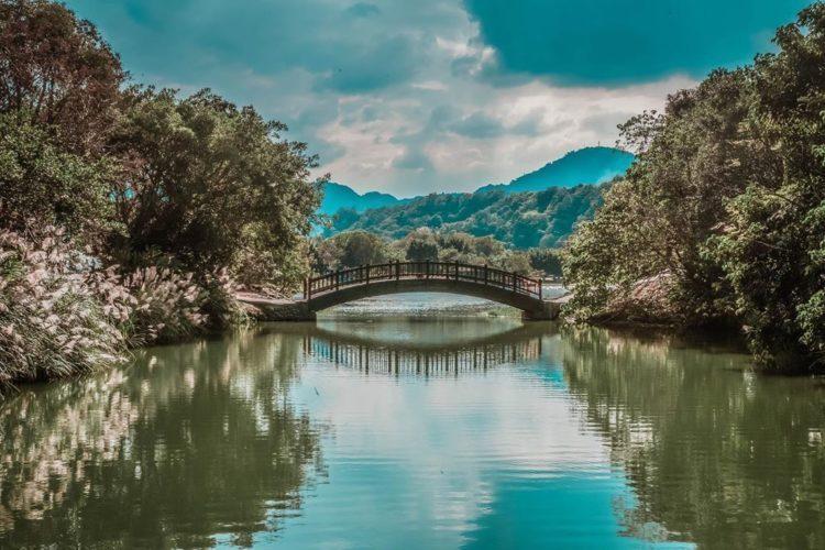 緊鄰著石門水庫物和大漢溪畔,三坑自然生態公園在建造時就採用了自然工法,以保留原始...