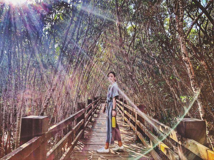 放眼望去一整片的紅樹林生態驗證了「數大便是美」的真諦。 圖/IG@timespa...