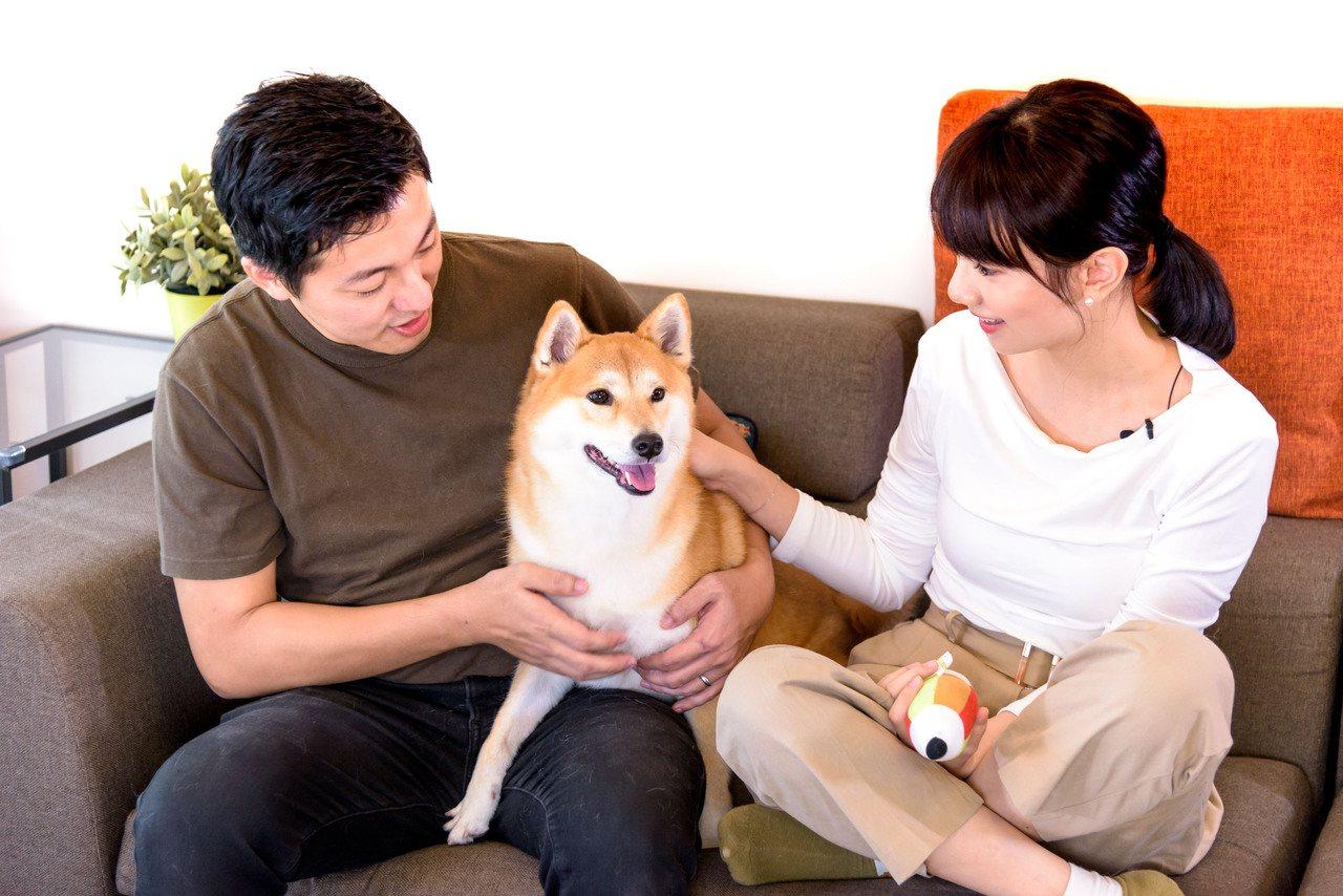 養寵物讓民眾在重重防疫措施下,還能感受到溫暖的陪伴。  圖/吳彥鋒 攝影