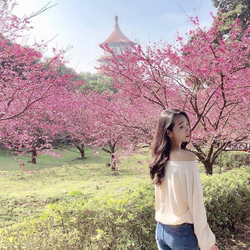▲北部過年走春景點-新北天元宮。(圖/hulu_l99546, Instagram)