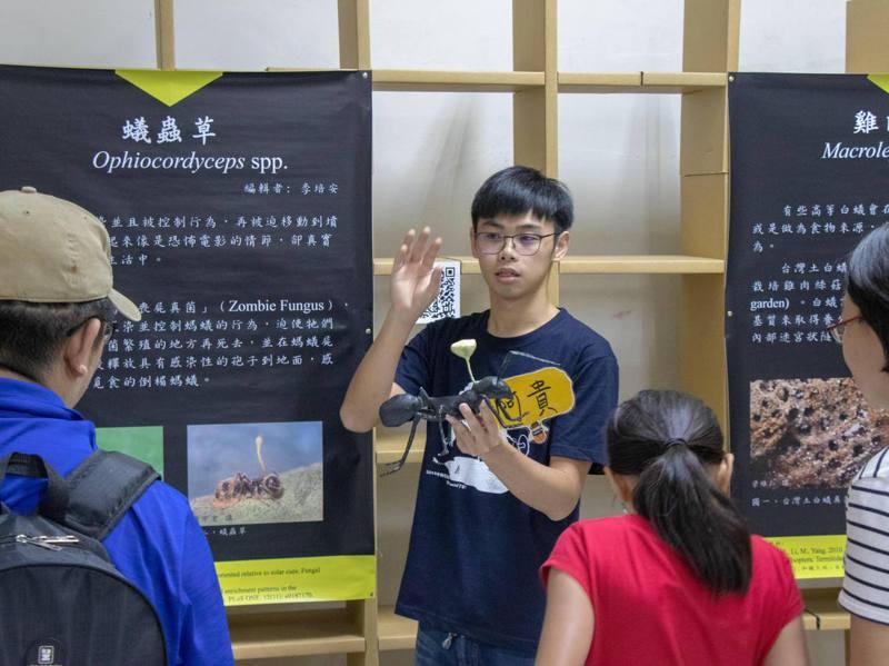 愛蟲如癡的楊朝貴,高中時便以許多人的「跳板系」昆蟲系為第一志願。圖/楊朝貴提供