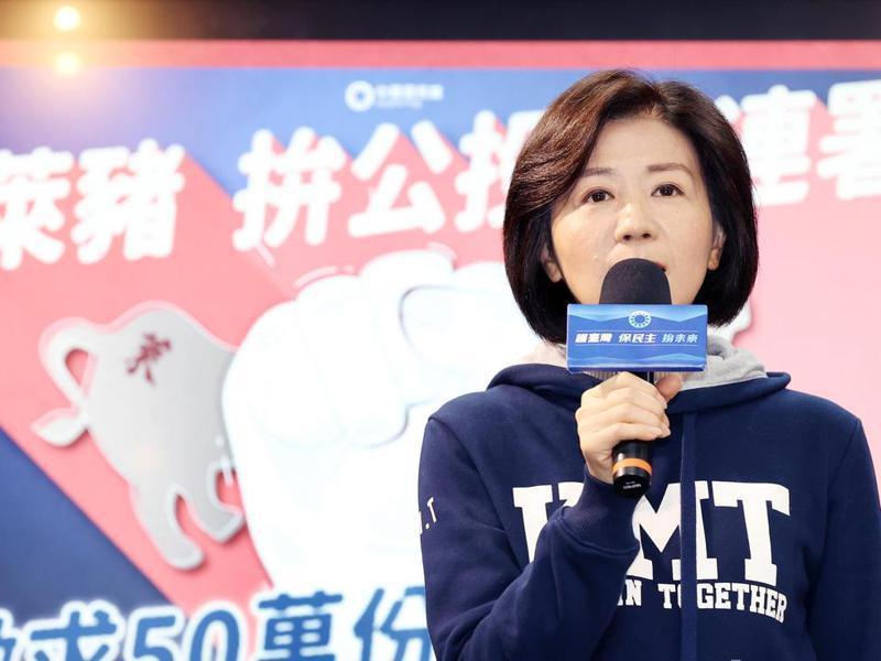 民進黨網路社群中心主任范綱皓批評國民黨找王育敏拍飛行外套照片是「50歲阿姨」,遭批年齡歧視。圖/聯合報系資料照片