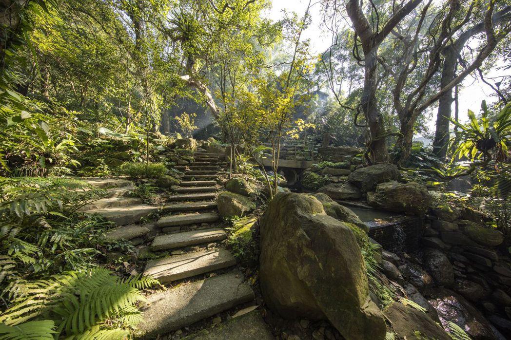 大板根森林溫泉酒店擁有全台唯一的低海拔熱帶雨林,園區內原生亞熱帶雨林蔓生數百年以...