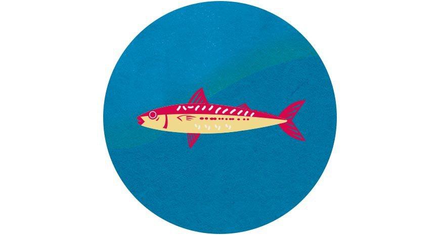 比起肉食性魚種,大量養殖恐造成海洋生態的壓力,可多食用吃素的虱目魚。 圖/主婦聯...