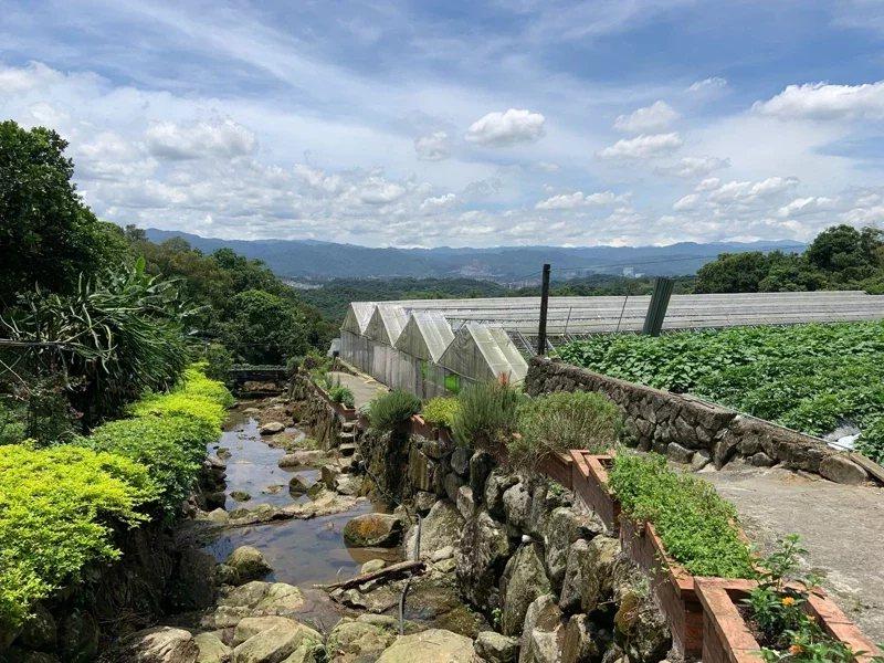 內湖區清香農場環境幽雅,採網室栽培草莓。 圖/北市產業局提供