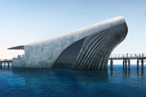 Baca Architects設計的澳洲海洋探索中心,彷彿從海中浮出的鯨魚。圖/...