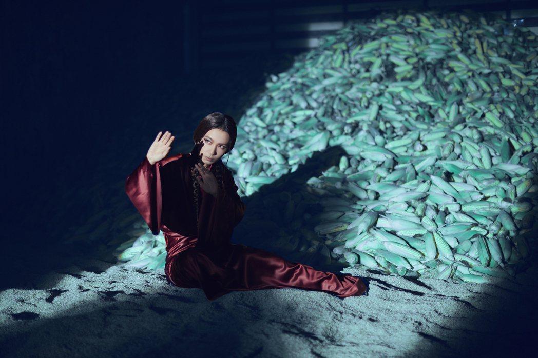 田馥甄自嘲像落難的玉米公主。圖/何樂音樂提供