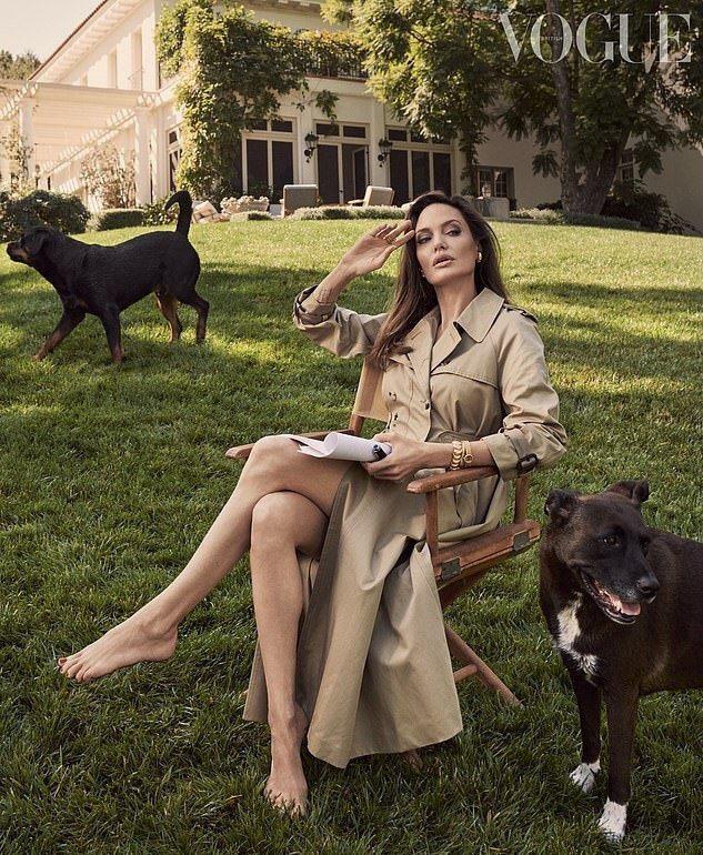 日前登上時尚雜誌封面的好萊塢女星安潔莉納裘莉,傳出將拍賣前夫布萊德彼特送給她的畫...