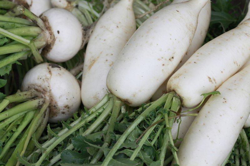 蘿蔔湯是不少人心中經典的家常菜之一。 蘿蔔示意圖/ingimage
