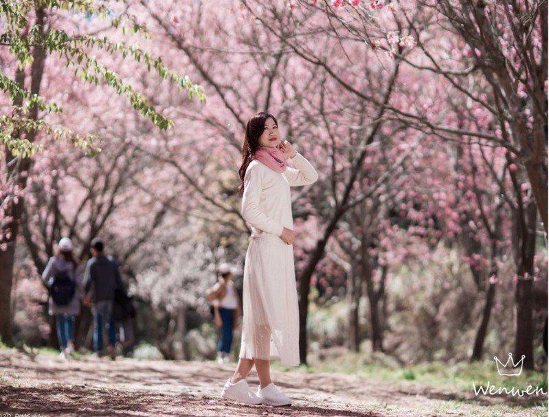 與櫻花合照時,選擇粉色系服裝,不僅讓你看起來粉嫩粉嫩的,在櫻花樹下拍起照來,畫面特別和諧,怎麼拍都特別好看!圖/IG@wenwen88520授權