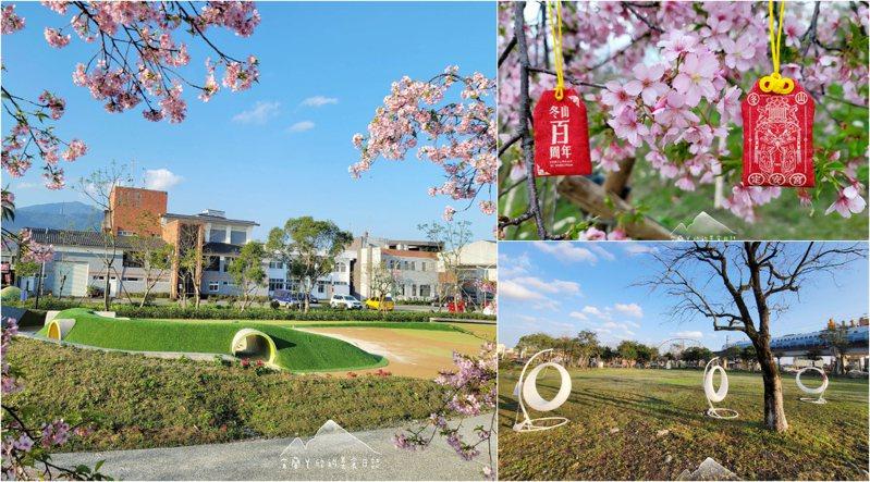 櫻花為2/7攝下的花況,以下皆同。圖/宜蘭ㄚ欣的美食日誌授權