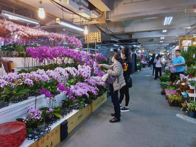 板橋花市2月6日至2月10日延長營業到晚上10時。圖/新北市農業局提供