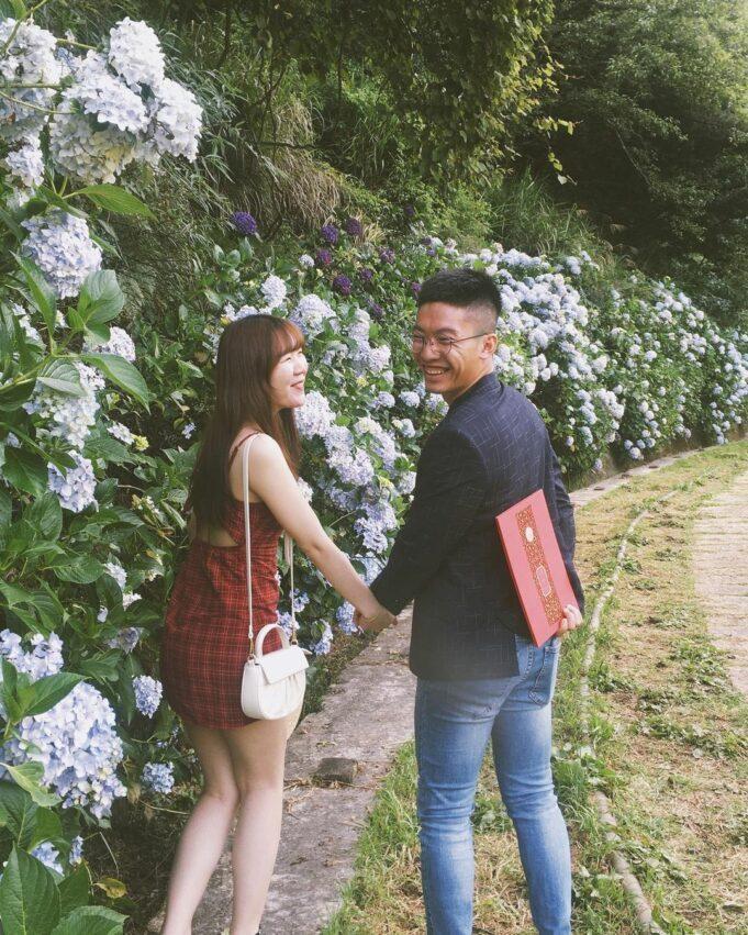 武陵農場內的繡球花比其他地區的花型更壯大碩麗,花球直徑可比一般人頭還大,美不勝收...