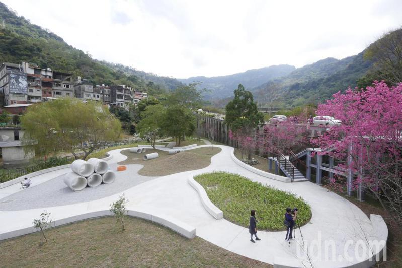 野薑花公園裡除種植野薑花外,也保留原有的山櫻花、梅子花。記者陳斯穎/攝影