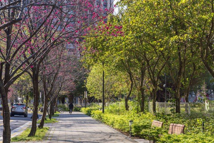 敦南街是大安區罕見的櫻花街,隱私度極高,受星光名人青睞。