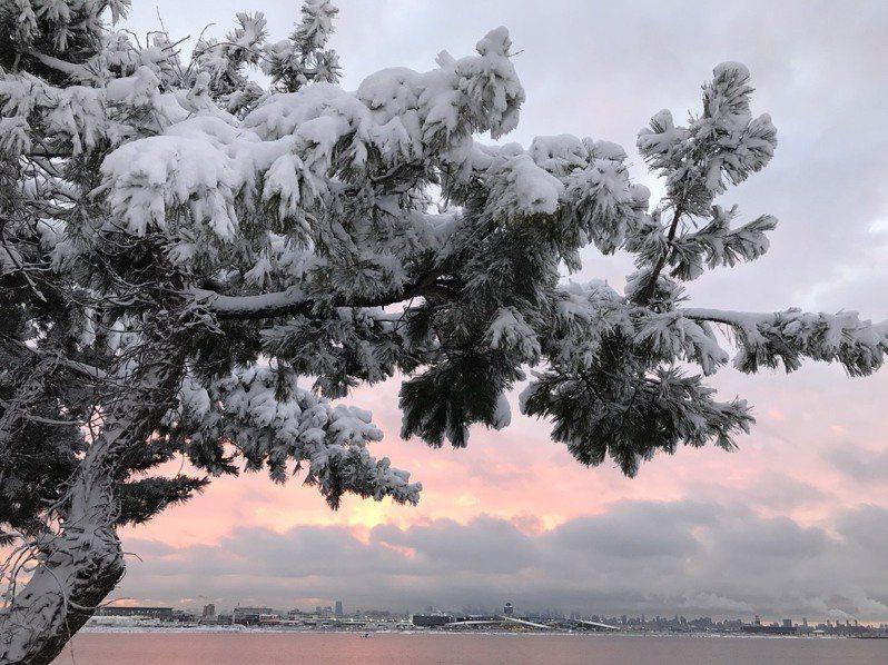 美東連日大雪,各地一片銀白景象,圖為紐約法拉盛,後方則是拉瓜地亞機場。圖/讀者提供