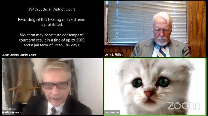 律师庞误开了猫猫洒镜,要向法官澄清自己不是猫。(YouTube影片截图)(photo:UDN)