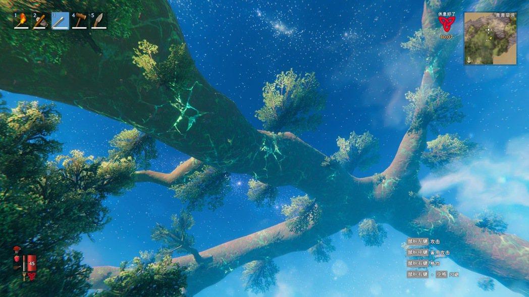 世界之樹很壯觀,但好像無法上去