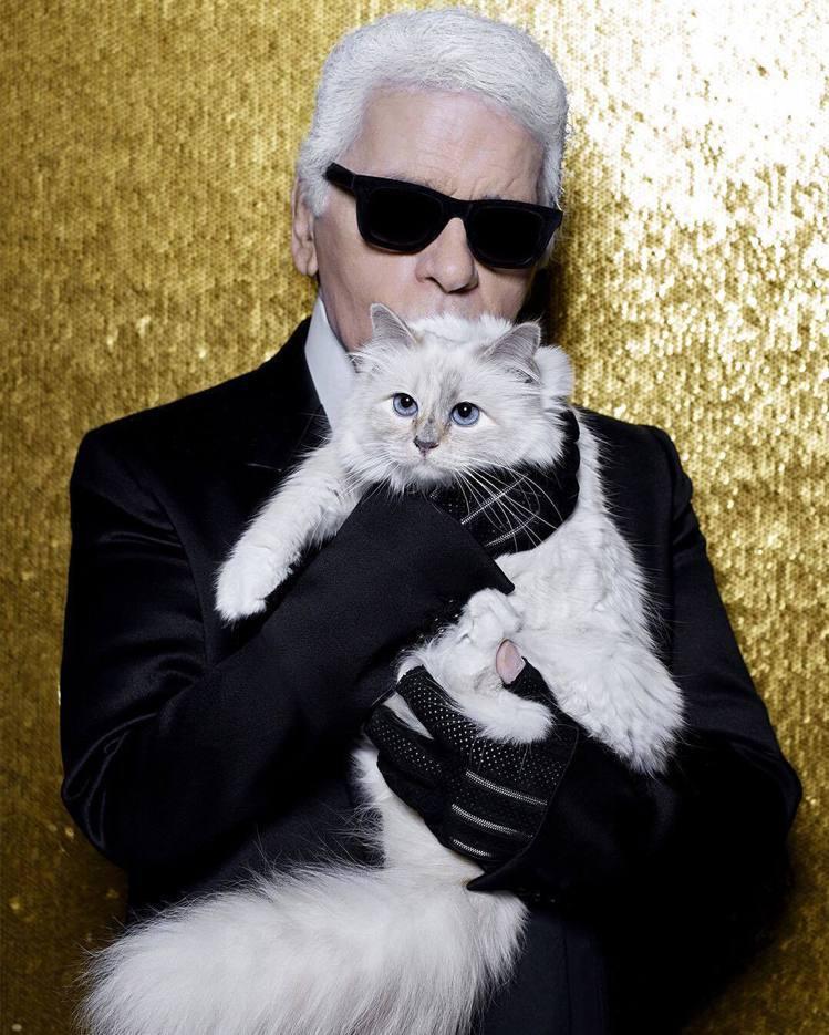已故兩周年的「時尚大帝」老佛爺與他的愛貓合影。(圖/取自instagram帳號「...