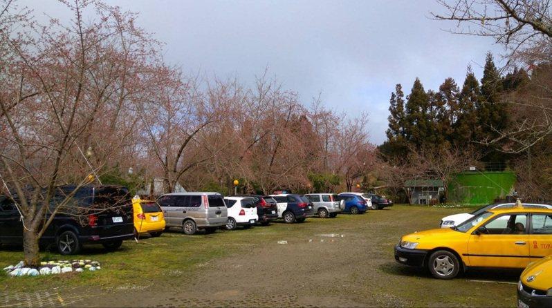 北橫農場停車場車位不多,遊客需配合警方交管。記者鄭國樑/翻攝