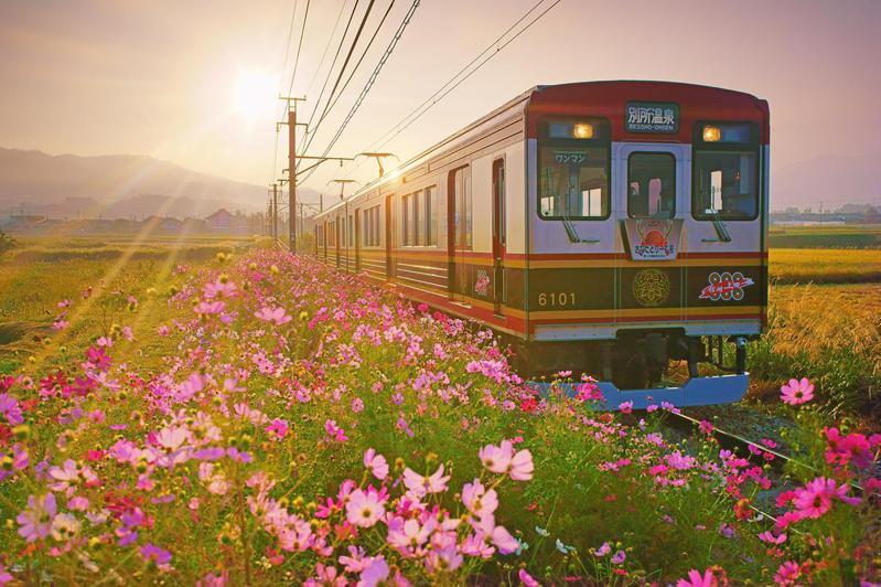 ©岡田光司