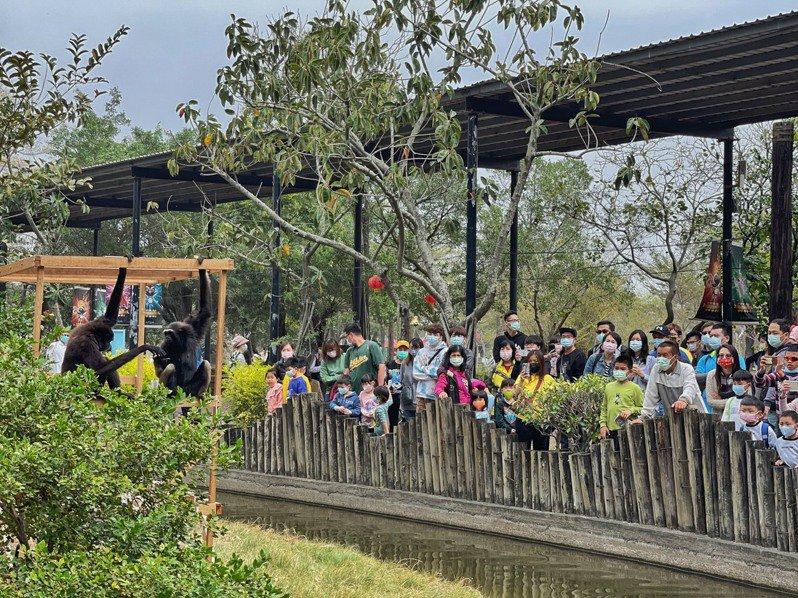 台南頑皮世界在春節期間吸引大批觀光人潮,大人小孩進行親子之旅。記者鄭惠仁/翻攝