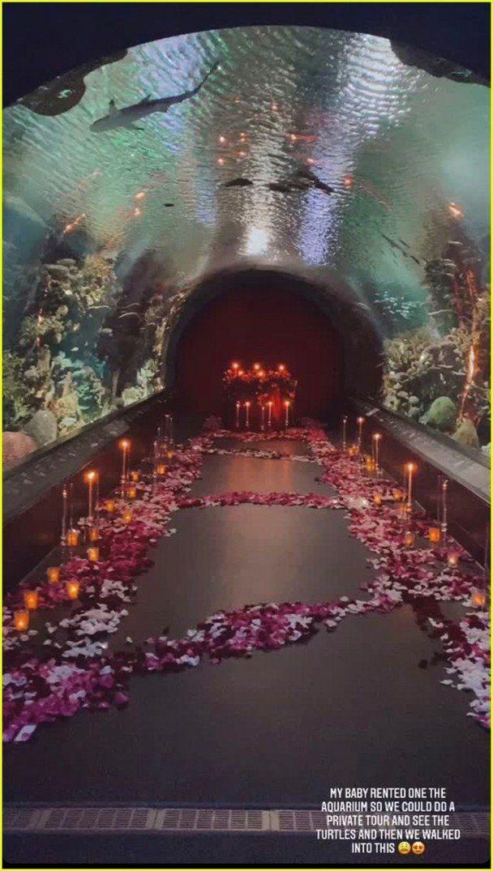 「黑豹」反派男星麥可B喬登在情人節當天包下一整個水族館向女友示愛。圖/摘自IG