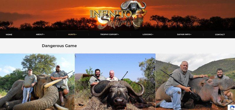 美國人道主義協會認為疫情並沒有減緩戰利品狩獵行為,野外動物仍遭受慘忍屠殺。圖擷自Infinito Safaris