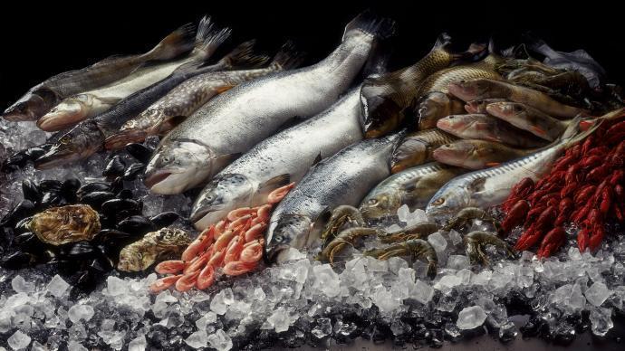 海鮮水產品可能是新型冠狀病毒滋生的「培養基」。(澎湃新聞)