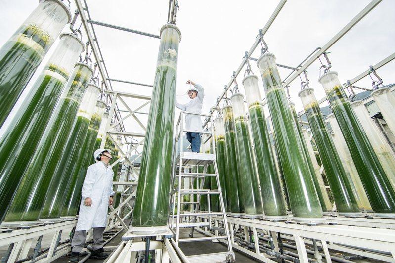 台泥打造花蓮和平廠成為亞洲最大的碳捕獲基地。(圖/台泥提供)