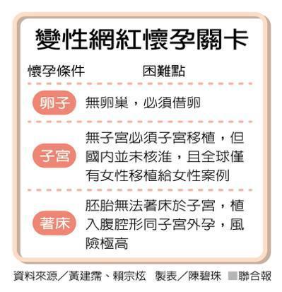 變性網紅懷孕關卡 製表/陳碧珠