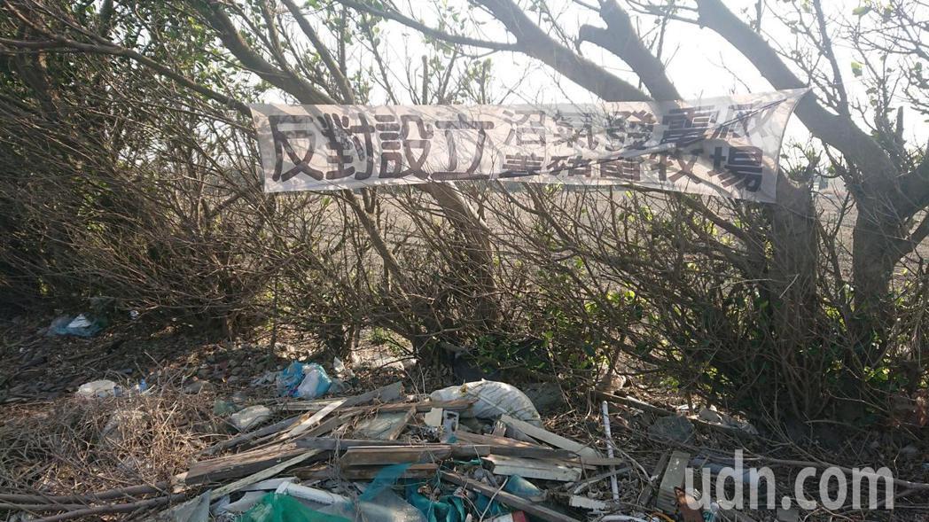 彰化縣芳苑鄉五俊村民懸掛白布條反對增設養豬場。記者簡慧珍/攝影