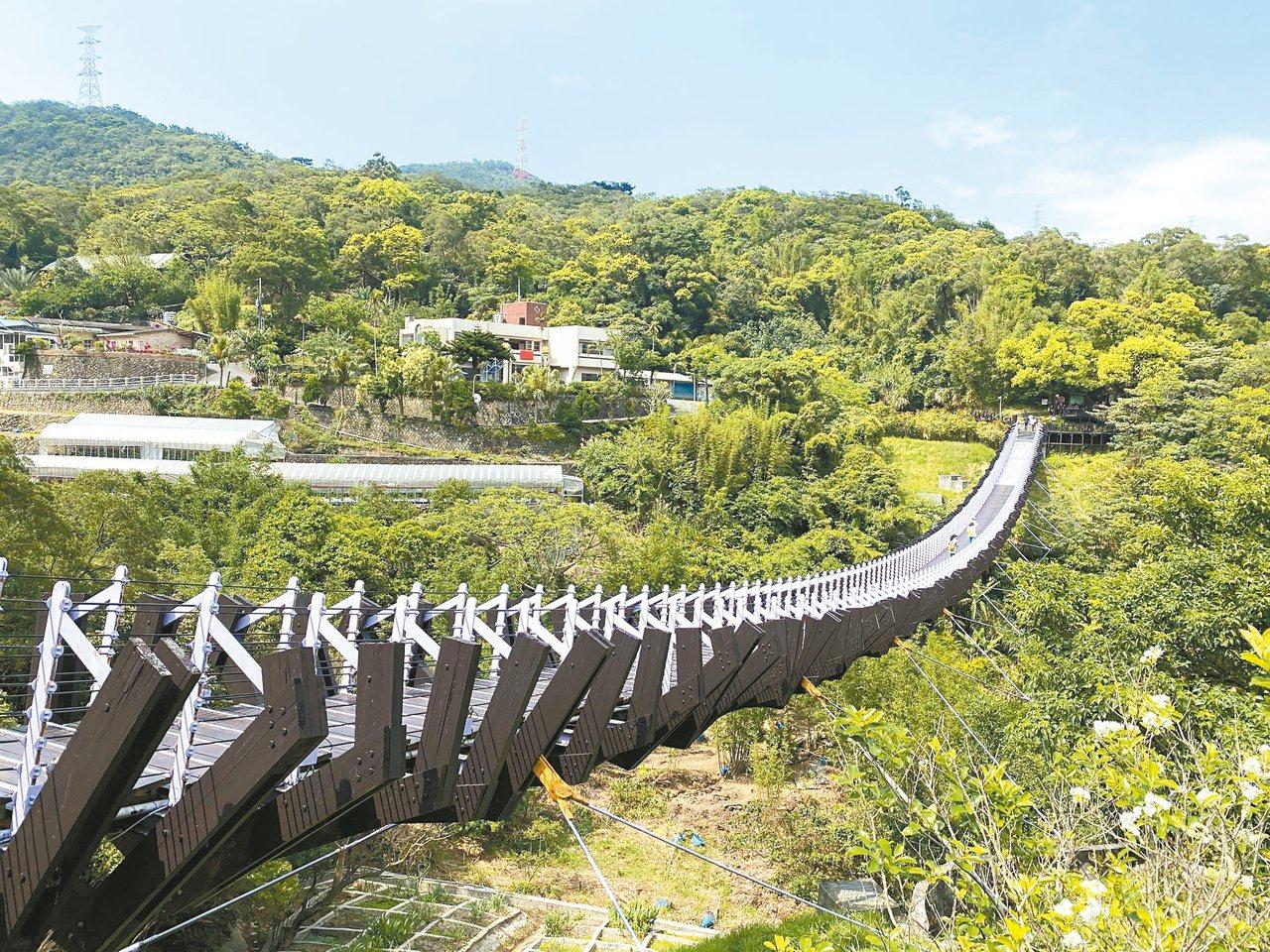 白石湖吊橋宛如龍骨,兩端銜接白石湖休閒農業區與碧山巖。 圖/大地工程處提供