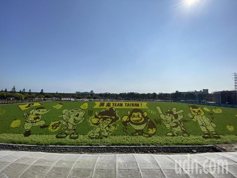 屏東熱帶農業博覽會,彩繪稻田。記者劉星君/攝影