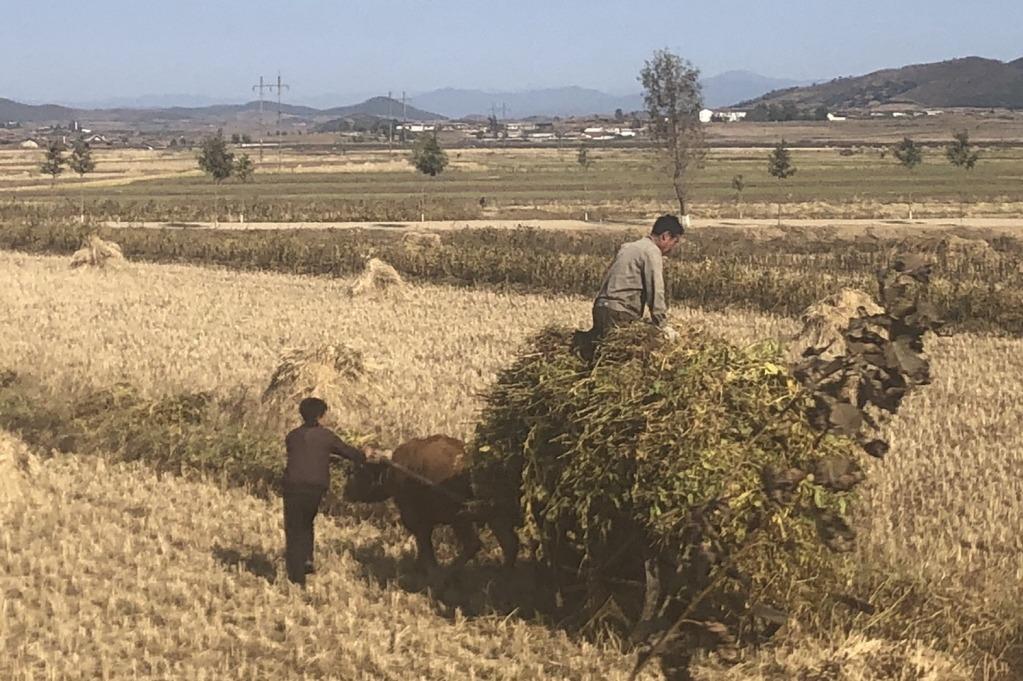 世界糧食計劃署警告 可能中止對北韓援助工作