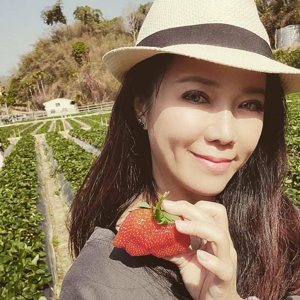 陳仙梅po出過年採草莓。圖/摘自臉書